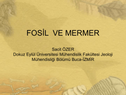 Fosil ve Mermer