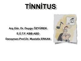 Tinnitus - Prof Dr. Mustafa Erkan