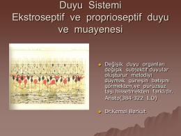 Duyu Ssistemi