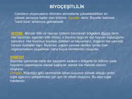 Biyom - Eodev.com