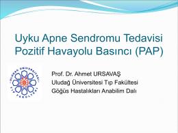 Slayt 1 - Prof. Dr. Ahmet URSAVAŞ