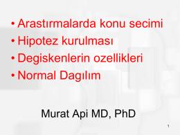 Murat Api