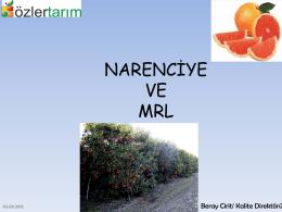 Narenciye MRL
