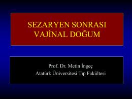 Metin İngeç Antalya 2013