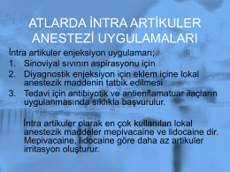 ATLARDA İNTRA ARTİKULER ANESTEZİ