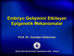 Cavidan Gülerman