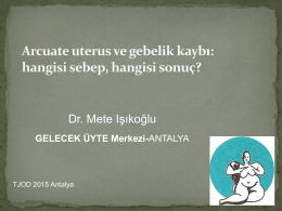Mete Işıkoğlu