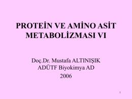 Amino asitlerdeki azotun akıbeti-üre döngüsü