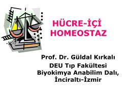 Glukoz homeostazisi - mustafaaltinisik.org.uk