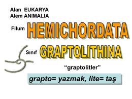 Graptolitler