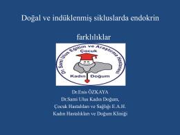 Enis Özkaya
