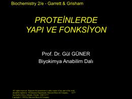 Proteinlerde yapı düzeyleri