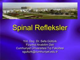 6 The Spinal Cord - Cumhuriyet Üniversitesi Tıp Fakültesi