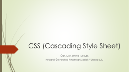 CSS Giriş - Personel Web Sistemi