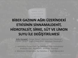 10-Biber Gazının Ağrı Üzerindeki Etkisinin Sinnamaldehit, Hidrotalsit