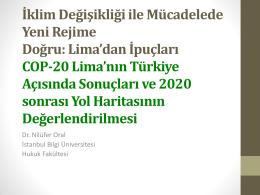 Nilufer-Oral-COP-20-Limanin-Turkiye-Acisinda-Sonuclari-ve-2020