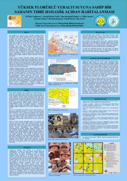 6. Türkiye Jeoloji Kurultayı Poster Sunumu