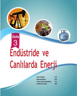 Ünite 3: Endüstride ve Canlılarda Enerji