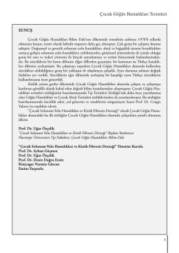 İncelemek İçin Tıklayınız (PDF)