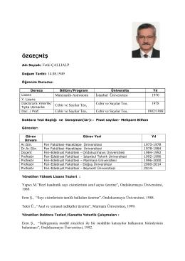 Prof.Dr.Fethi ÇALLIALP - Beykent Üniversitesi