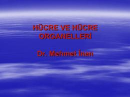 Hücre ve Hücre Organelleri
