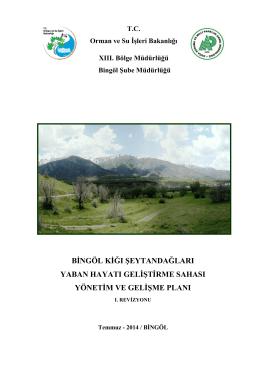 Revize Planı - 13.Bölge Müdürlüğü