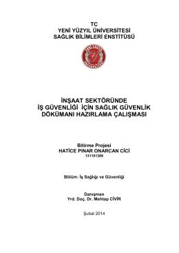 PINAR CİCİ bitirme tezi - İstanbul Yeni Yüzyıl Üniversitesi