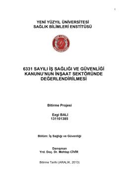 YENİ DÖNEM PROJESİ 6331 EZGİ BALI PDF