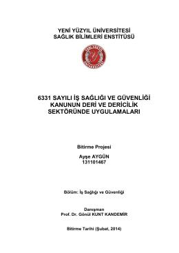 AYŞE AYGÜN-BİTİRME PROJESİ - İstanbul Yeni Yüzyıl