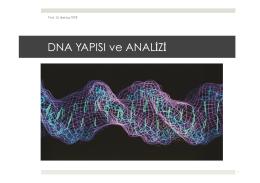 11. DNA Yapısı ve Analizi.pptx
