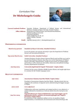 Dr Michelangelo Guida - İstanbul 29 Mayıs Üniversitesi