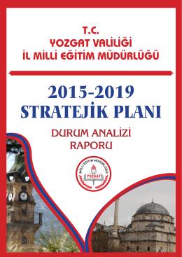 2015-2019 durum analizi raporu pdf belgesi