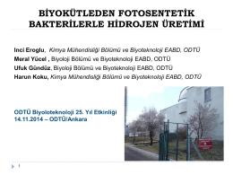 Prof. Dr. İnci Eroğlu