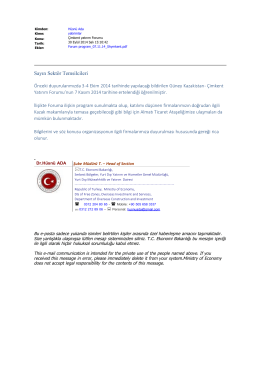 Sayın Sektör Temsilcileri - İhale Özelleştirme Yatırım