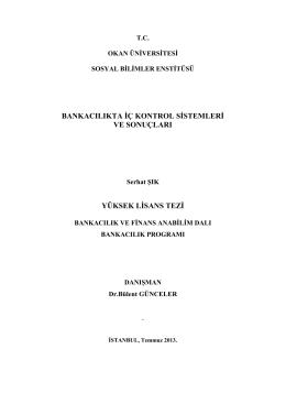 yüksek lisans tezi - Okan Üniversitesi eArşiv