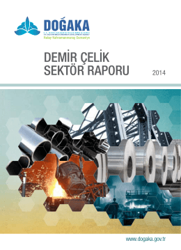 Demir Çelik Sektör Raporu 2014