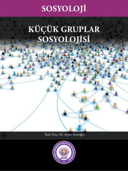 KüçüK Gruplar SoSyolojiSi SoSyoloji