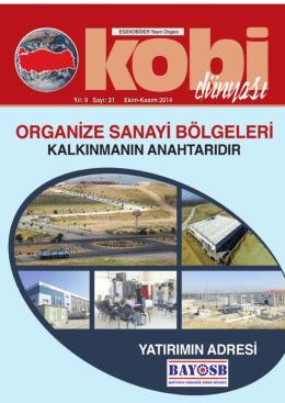 Sayı 31 E-Dergi