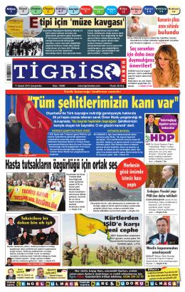 8 - Tigris Haber