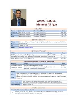 Assist. Prof. Dr. Mehmet Ali Ilgın