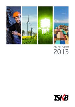 Faaliyet Raporu 2013