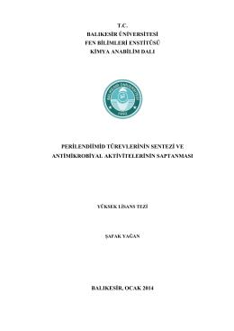 tc balıkesir üniversitesi fen bilimleri enstitüsü kimya anabilim dalı