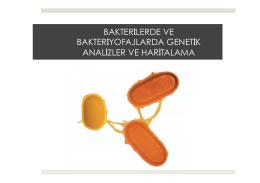 6. Bakterilerde ve Bakteriyofajlarda Genetik Analizler ve Haritalama