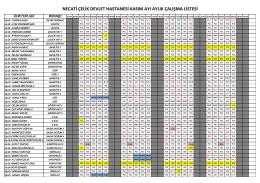 necati çelik devlet hastanesi kasım ayı aylık çalışma listesi