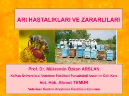Arı Hastalıkları - Akademik Bilgi Sistemi