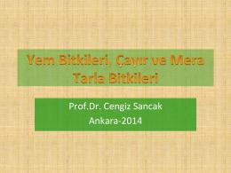 Prof.Dr. Cengiz Sancak Ankara