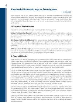 Kas-İskelet Sisteminin Yapı ve Fonksiyonları