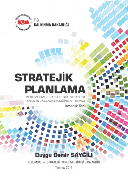Merkezi Kamu İdarelerinde Stratejik Planların Uygulama Etkinliğinin