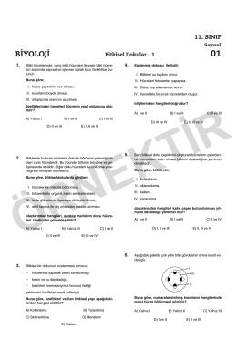 2013-2014 11.SINIF_Konu Kavrama:Mizanpaj 1.qxd