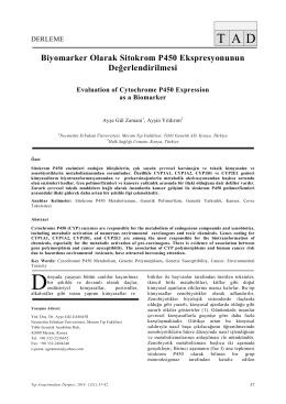 Biyomarker Olarak Sitokrom P450 Ekspresyonunun Değerlendirilmesi